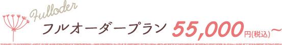 フルオーダープラン 54,000円(税込)~